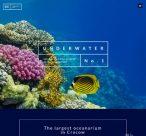 splash_home_underwater